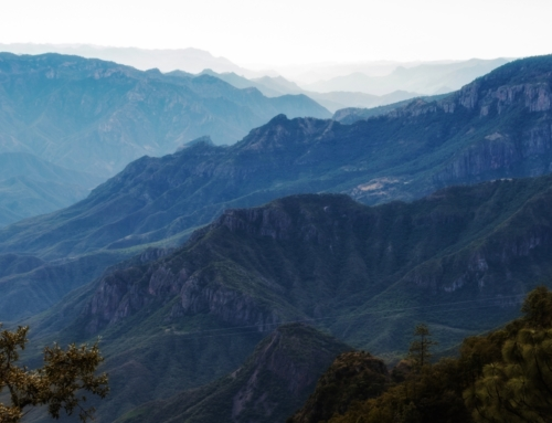 10 Facts About Mexico's Copper Canyon
