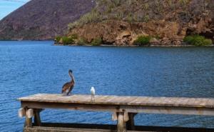 Visit Copper Canyon - Topolobampo